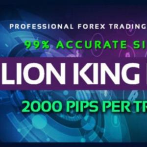 Lion King Pro Indicator