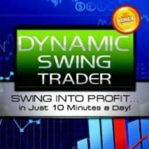 Netpicks Dynamic Swing Trader 2020 (latest)