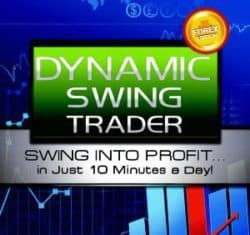 Netpicks Dynamic Swing Trader 2020 (latest)