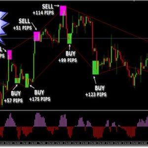 Elastic Trader PRO Indicator