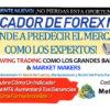 INDICADOR DE FOREX Mr. Y
