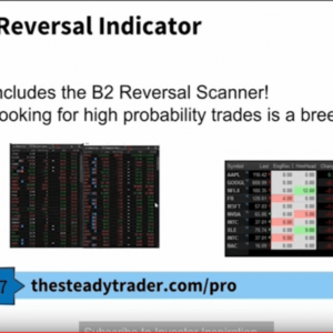 B2 Candlestick Reversal Indicator + Ultimate Candlestick Bootcamp