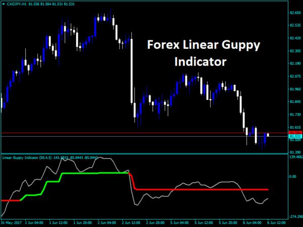 Linear Guppy Indicator